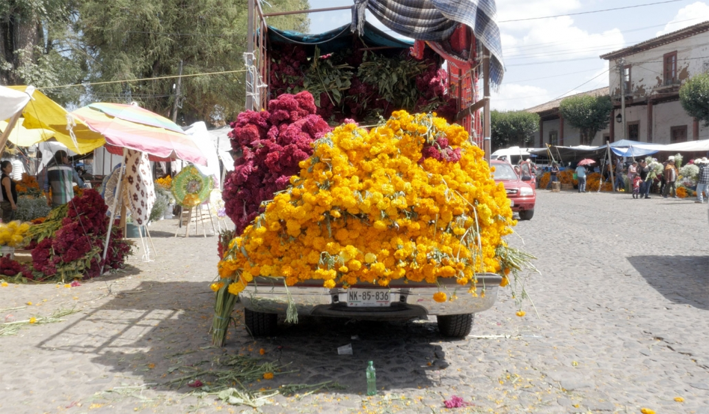 Vendors selling truckloads of marigold and cockscomb flowers to families who decorate the alters and graveyards where their loved ones are buried on Day of the Dead